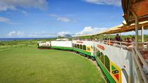 Tour Panoramico di Saint Kitts in Treno, St Kitts