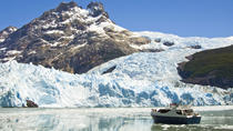 Glacier Sightseeing Cruise with Gourmet Lunch, El Calafate, Day Cruises