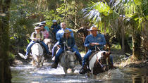 Horseback Adventure at Forever Florida Eco-Reserve, Orlando, Percorso a cavallo