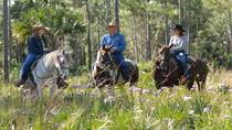 Horseback Adventure at Forever Florida Eco-Reserve