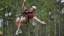 Zipline Safari at Forever Florida, Orlando, null