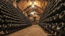 Cavas Freixenet Wine Tour from Mexico City, Mexico City, Wine Tasting & Winery Tours