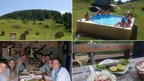 Eco Camping in Biogradska Gora (Bjelasica), Podgorica, Hiking & Camping