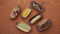 Aboriginal Bush Foods of the Outback, Ayers Rock