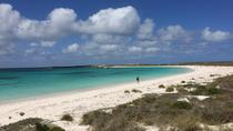 Abrolhos Island Half Day Fly and Flipper, Geraldton, Air Tours