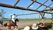 Day Ranch and Fiesta Gaucha in Santa Susana Ranch, Buenos Aires, Cultural Tours