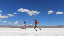 Full Day Trip to Salinas Grandes Salt Fields from Salta, Salta, Day Trips