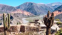 Salta Super Saver: Calchaqui Valley et Cafayate Winery plus Excursion d'une journée à Humahuaca Valley, Salta, Super forfaits
