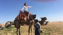 Private Camel Ride Around the Pyramids Area, Giza, Nature & Wildlife