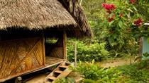 3-Day Iquitos Amazon Jungle Adventure at Ceiba Tops Luxury Lodge, Iquitos, Multi-day Tours