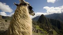 6 - Day Exploring Cusco, Cusco, Multi-day Tours