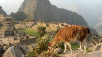 7-Day Lima and Cusco Tour with Overnight at Machu Picchu, Lima, Bike & Mountain Bike Tours