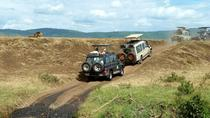 East Africa Highlights, Arusha, Private Sightseeing Tours