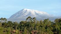 Mount Kilimanjaro Climb- Marangu Route 5 Days, Arusha, Climbing