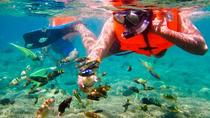 Bali Snorkeling Tour At Blue Lagoon All-inclusive, Ubud, Other Water Sports