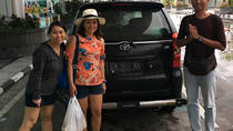Escursione a Bali Shore: tour privato di 6 ore in piccoli gruppi di Bali, Bali, Ports of Call Tours