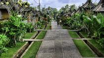 Full-day tour: Bali Traditional Tours, Ubud, Full-day Tours