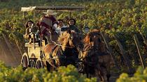 Colchagua Wine Route Tour from Santiago, Santiago, Wine Tasting & Winery Tours