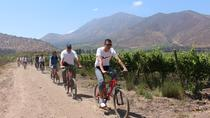 Maipo Valley and Santa Rita Wine Tour by Bicycle with Tastings, Santiago, Wine Tasting & Winery ...