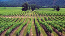 Maipo Valley Wine Tour: Santa Rita and Concha y Toro Wineries, Santiago, Full-day Tours