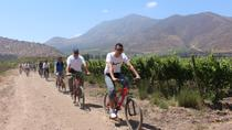 Santa Rita Winery Bike and Wine Tour, Santiago, Day Trips