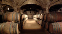 Santa Rita Winery Half-Day Tour from Santiago, Santiago, Half-day Tours