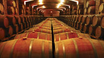 Undurraga Winery Half-Day Tour from Santiago, Santiago, Wine Tasting & Winery Tours