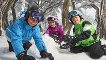 Mt Buller Day Trip Transfers from Melbourne, Melbourne, Day Trips