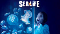 SEA LIFE Aquarium Arizona, Phoenix, Day Trips