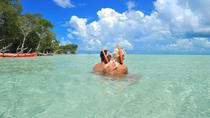 Island Adventure Snorkel Kayak and Eco Tour, Key West, Snorkeling