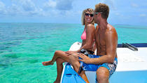 Key West Shore Excursion: Dolphin Watch and Snorkel Cruise, Key West, Ports of Call Tours