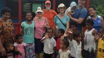 Full-Day Abaca Village and Koroyanitu Park Tour, Nadi, Full-day Tours