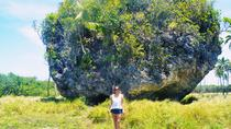 Nukualofa Shore Excursion: Private Full-Day Flexible Tonga Mainland Tour, Tonga, Ports of Call...