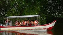 Fireflies Silver Leaf Monkey Seafood Dinner and Boat Ride Experience, Kuala Lumpur, Day Trips