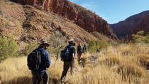 6-Day Larapinta Trail Walking Tour from Alice Springs, Alice Springs, 4WD, ATV & Off-Road Tours