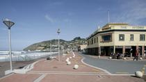 Dunedin City and Coastal Views 3-Hour Small-Group Guided Tour