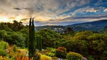 Dunedin Gardens and City Highlights Tour, Dunedin & The Otago Peninsula, Day Trips