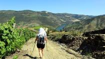 Ervedosa do Douro Walking Tour, Porto, City Tours