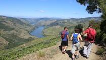 Valença do Douro Walking Tour, Porto, City Tours