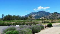 Calistoga Wine Country Sip 'n' Cycle Bike Tour, Napa & Sonoma, Wine Tasting & Winery Tours