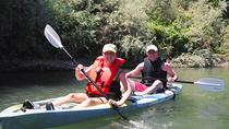 Guided Kayak Tour on Russian River, ナパとソノマ