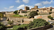 Civitavecchia Shore Excursion: Private Day Trip to Tarquinia and Tuscania, Rome, Ports of Call Tours