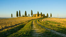 Livorno Shore Excursion: Chianti and Tuscany Countryside Private Wine Tour, Livorno, Ports of Call ...