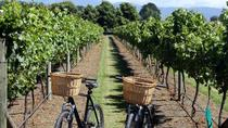 Half-Day E-Bike Vineyard Tour with Wine Tasting from Nice, Nice, Bike & Mountain Bike Tours