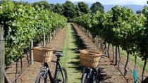 Half-Day Electric Bike Vineyard Tour from Nice, Nice, Bus & Minivan Tours