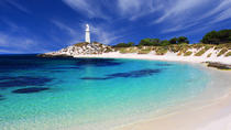 Rottnest Island Round-Trip Ferry from Perth or Fremantle, Perth, Ferry Services