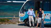 Rottnest Island Tour from Perth or Fremantle, Perth