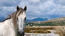Connemara- Self walking- 7 days, Galway, Walking Tours