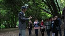 Irish Storytelling Tour from Dublin, Dublin, Walking Tours
