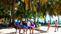 Saona Island Day Trip with Private Transportation, Punta Cana, Private Sightseeing Tours